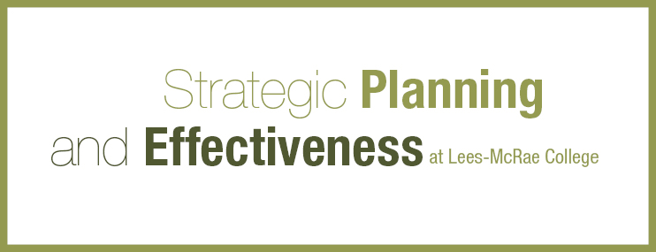 Strategic Planning and Effectiveness